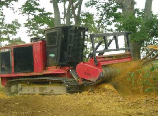 Land Clearing Equipment | Mulchers, Bull Hogs, & Grapples | Papé